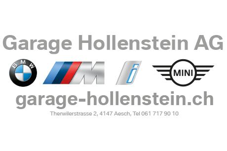 Hollenstein logo 460x306